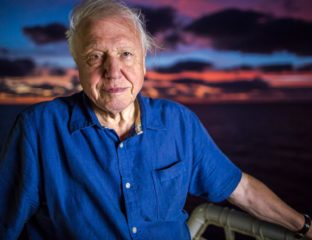 "Legendary wildlife documentarian David Attenborough has opened up about his lifelong career, and how he will contemplate retirement if his work ever becomes ""substandard""."