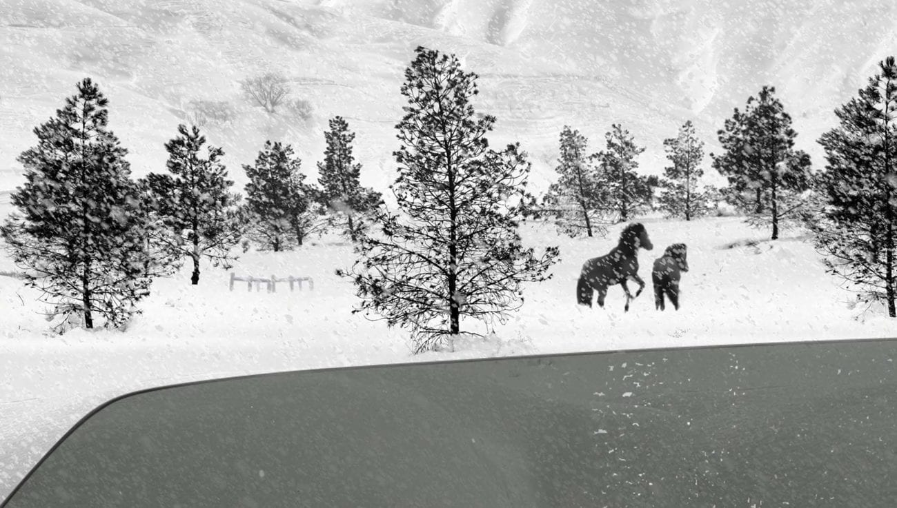 '24 Frames' is an experimental project made by filmmaker Abbas Kiarostami in the last three years of his life. It is a collection of 24 short four-and-a-half minutes films inspired by still images, including paintings and photographs.
