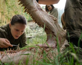 Set for release in just two days, Alex Garland's latest mind-bending epic looks set to take us all on a vast and visual journey before spitting us out afterward. 'Annihilation' has been amassing rave reviews, which bodes incredibly well for those of us who live for the sci-fi genre.