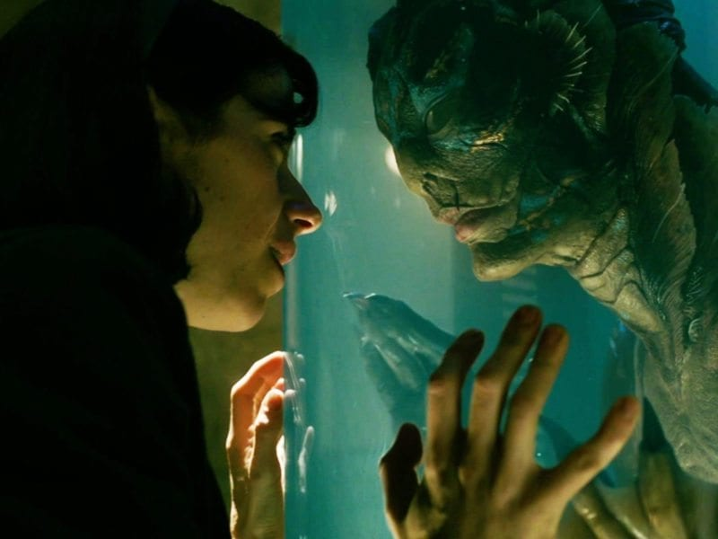According to the family of the late Pulitzer Prize-winning author Paul Zindel, Guillermo del Toro's 'The Shape of Water' is apparently a blatant rip-off. The writer's family have sued del Toro and Fox Searchlight for allegedly stealing the story for the Oscar-nominated movie.