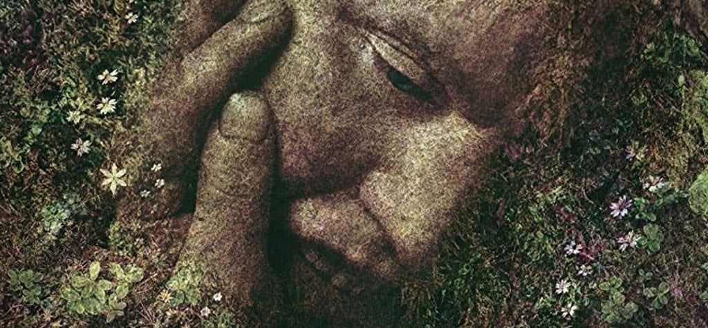 Ali Abbasi's acclaimed fantasy thriller 'Border'