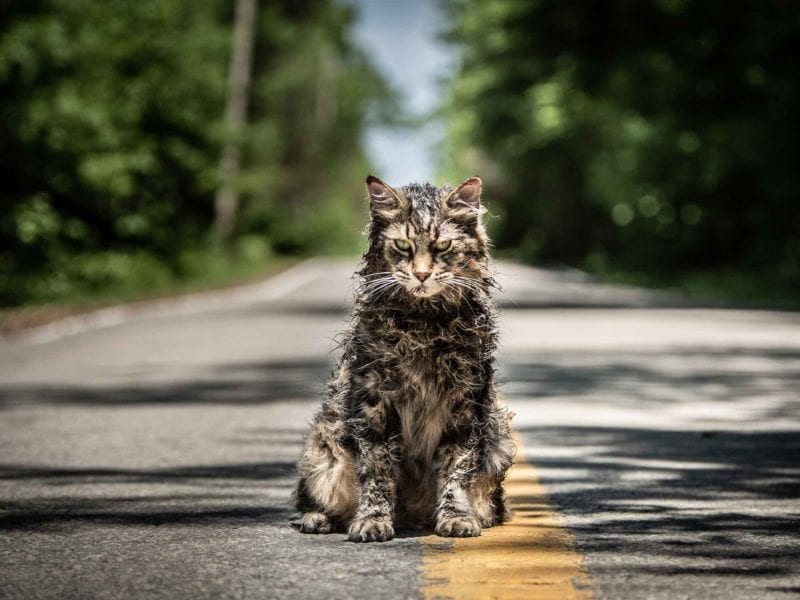 Hollywood remakes are a bad idea. We look at 'Pet Sematary' and other remakes that were dead on arrival.