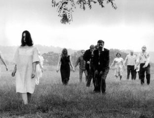 What better way to prepare for Zombie Awareness Month than watching every single great zombie movie to sharpen up on your slaughtering skills?