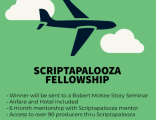 The Scriptapalooza Fellowship recipient will be flown to a Robert McKee Seminar and be mentored for 6 months by one of their producers.
