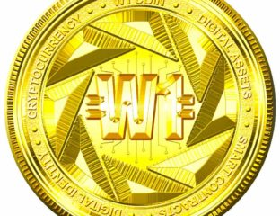 The W-1 Platform™/Hollywood Blockchain™ is an entertainment ecosystem based on advanced blockchain technology, and Smart Web 3.0 infrastructure.