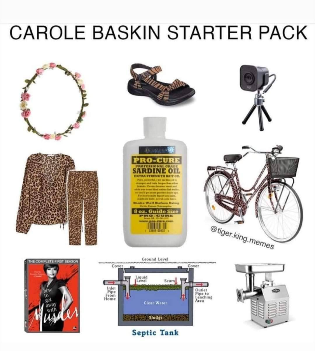 Carole Baskin has done a lot besides kill her husband. Like become an internet sensation. Here's a new collection of 'Tiger King' memes focused on Carole.