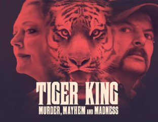 If you're curious, but unsure if you want to watch Netflix's 'Tiger King', then here is a beginner guide to help you out.