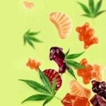 Whether you're into CBD edibles, or the combination of both CBD/THC there are some great movies to throw into the mix. Here they are!