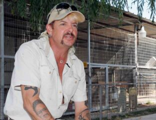 It's hard to believe that Netflix's 'Tiger King' counts as true crime. Here's all the crimes Joe Exotic was charged and sent to jail for.