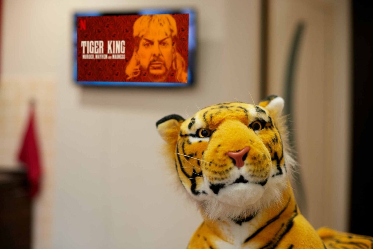 The new Netflix true-crime docuseries 'Tiger King' recaps the insane life behind Joe Exotic. Here's all the reasons it's the worst.