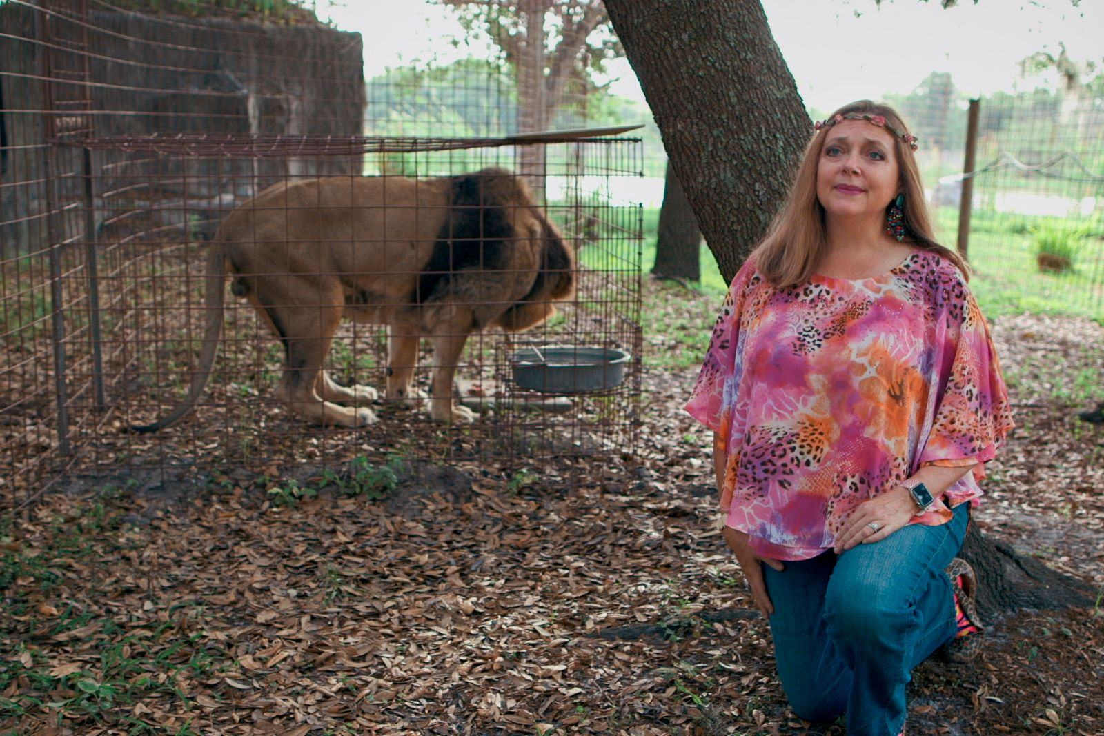 You know her, you probably hate her, but do you really know Big Cat Rescue? Here's everything you need to know about Carole Baskin's company.