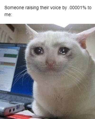Feeling down? Let this crying cat meme cheer up your life ...