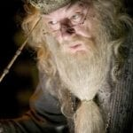 Albus Dumbledore has been something of a divisive figure within the 'Harry Potter' fandom for a long time. Here are the best Dumbledore memes.