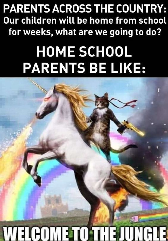 Is your home school, too? These memes describe life for us ...