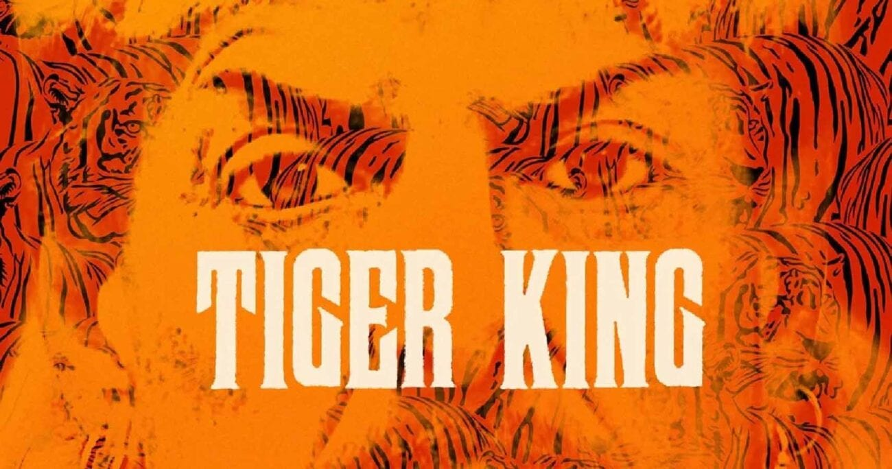 Chock-full of wild antics, and schemes that are stranger than fiction, 'Tiger King' left fans thirsty for more. Here's what we can expect from the cast.
