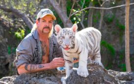 Addicted to 'Tiger King' on Netflix? We got the dish on what's coming next for the hit docu-series, including the topic of season 2.