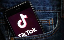 Hollywood may be stalled during quarantine but Tik Tok is going strong. Here are some of the Tik Tok videos you need in your life during quarantine.