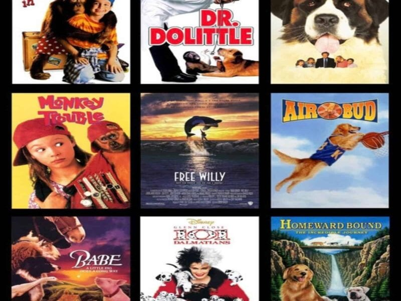 Consider how Hollywood markets animal movies to win over our hearts and minds with examples from 'Dolittle' and 'Air Bud'.