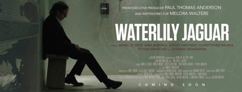 Melora Walters has spent her life as an actress, but she's gone behind the scenes in her directoral debut, 'Waterlily Jaguar'. We interviewed the director.