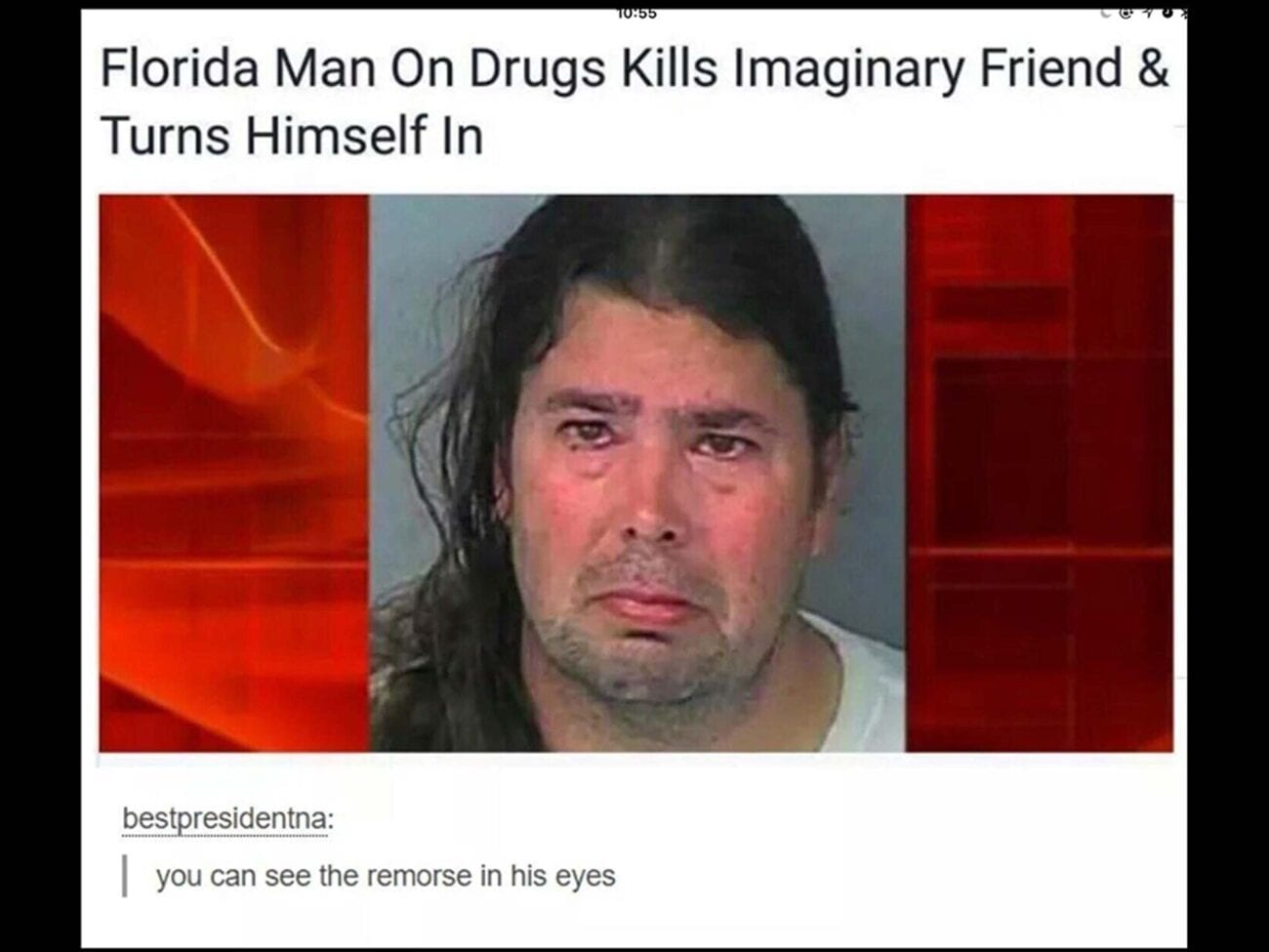 We've all been waiting patiently for this quarantine to end. Luckily we have entertaining Florida Man headlines. Here are a few favorite headlines.