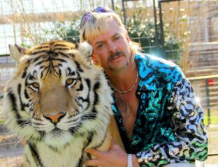 Carole Baskin, killed her husband, whacked him. We've searched high & low for our favorite Joe Exotic & 'Tiger King' memes for you to enjoy. Here they are.