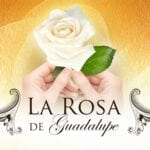"'La Rosa de Guadalupe' translates to ""the rose of Guadalupe"". Here's why 'La Rose de Guadalupe' should be your next binge."