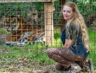 Oh Carole Baskin of 'Tiger King' fame, what do we do with you? Here's what we know about Baskin and her troublesome relationship with 'Tiger King'.