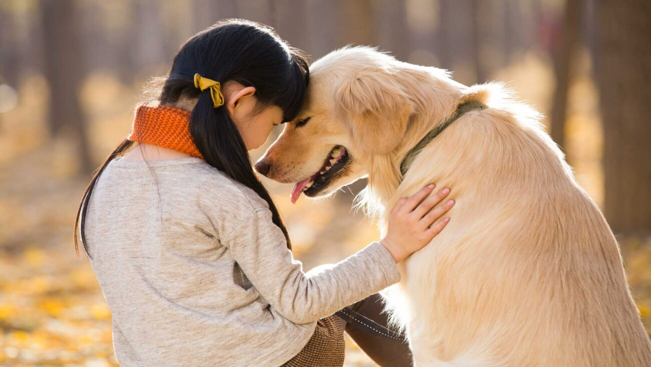 Today's compilation of cute is a list of adorable human and dog interactions. Here are photos proving dogs are certainly man's best friend.