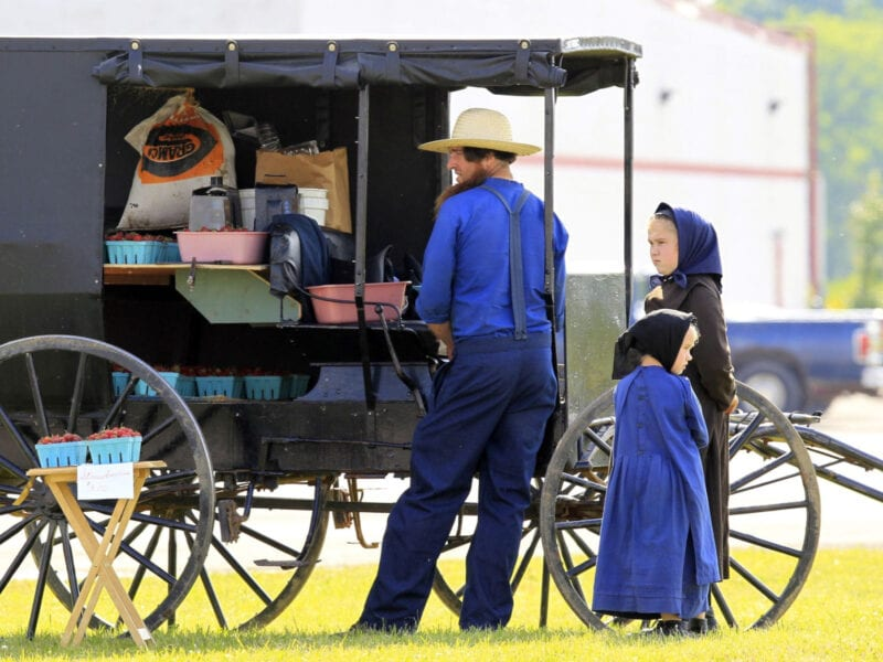 Sex abuse reports are rising drastically among Amish people. Learn about what communities are doing and what survivor's experiences are like here.