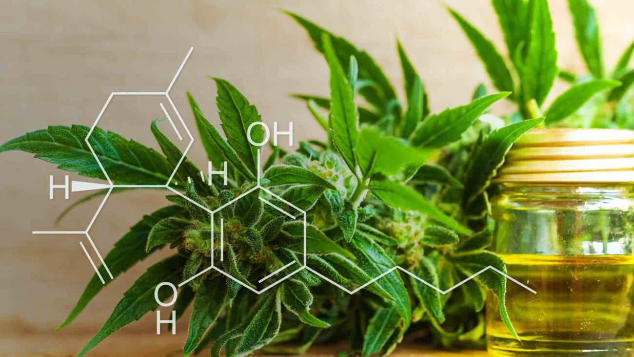 Wondering whether giving CBD is right for you? Lots of celebrities already use it for various reasons. Here's what you need to know.