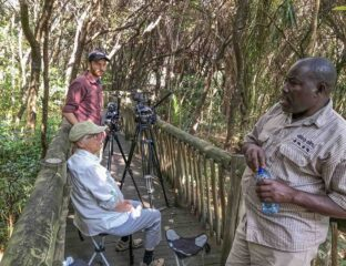 'Pant Hoot' is a new documentary short film directed by Richard Reens. It follows the touching story of a man who learns to speak with chimpanzees.