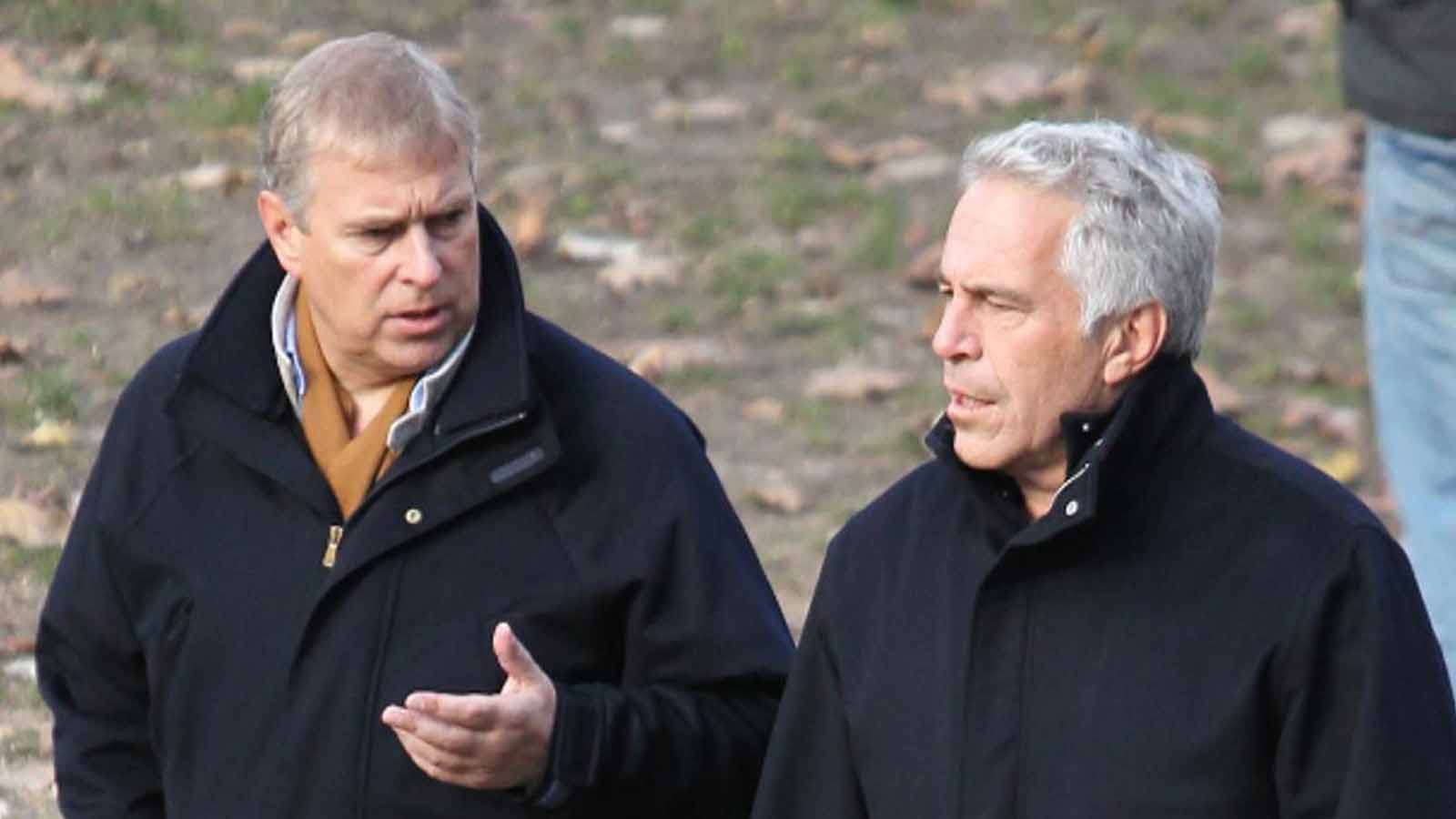 The Royal family recently updated their website, removing nearly any mention of Prince Andrew. Are they trying to distance themselves from him and Epstein?