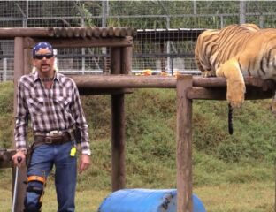 'Tiger King' was the first pandemic obsession. What's going to happen to the zoo now? Will Netflix use the abandoned zoo as a film set?