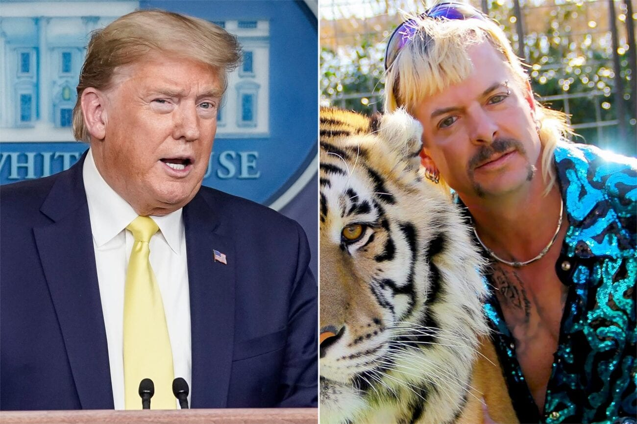 Is Joe Exotic actually getting pardoned? Discover the latest developments in the 'Tiger King' star's case.