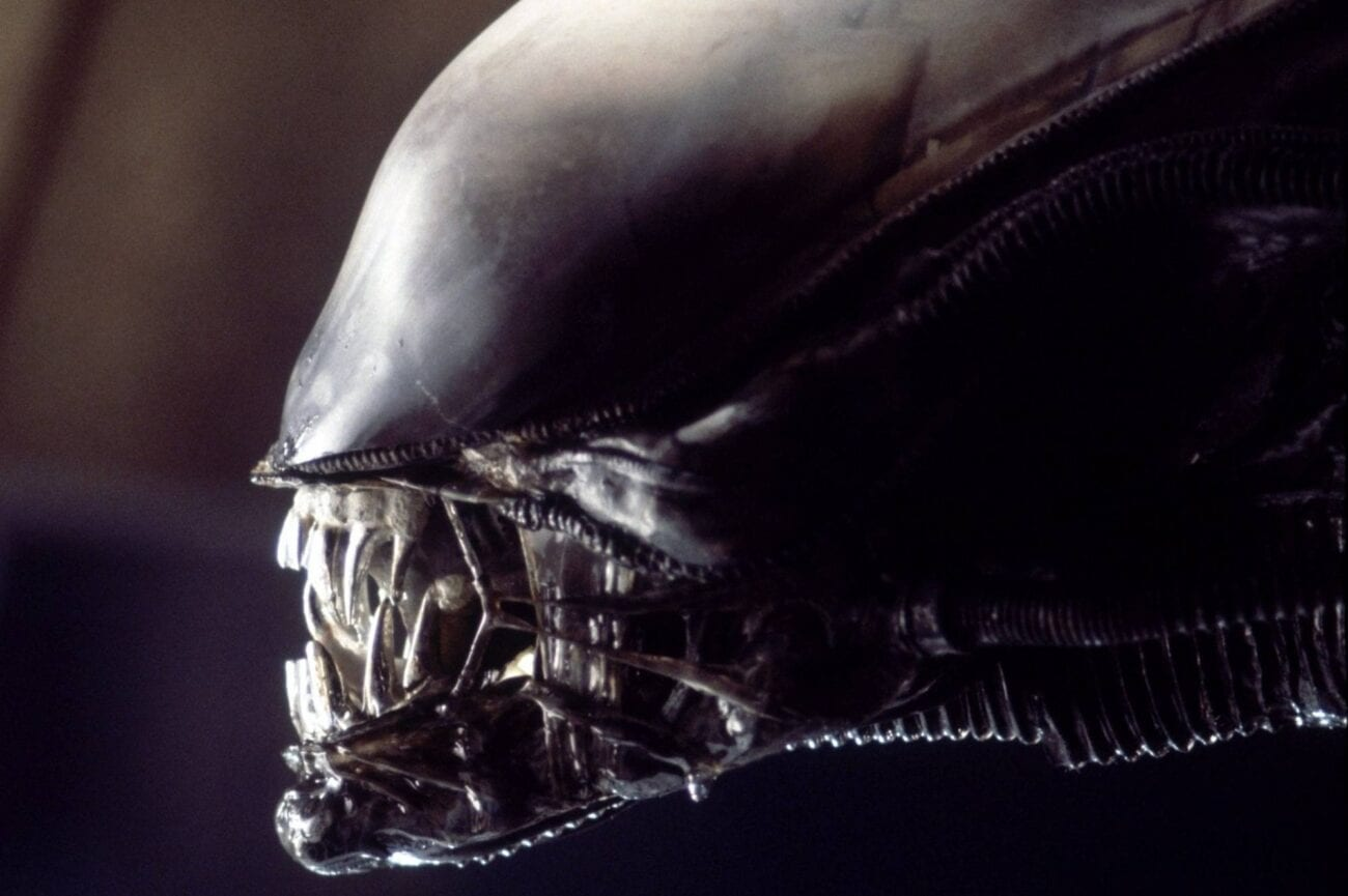 If you're a fan of the 'Alien' franchise, then you'll want to hear this news about the upcomming movies being planned.