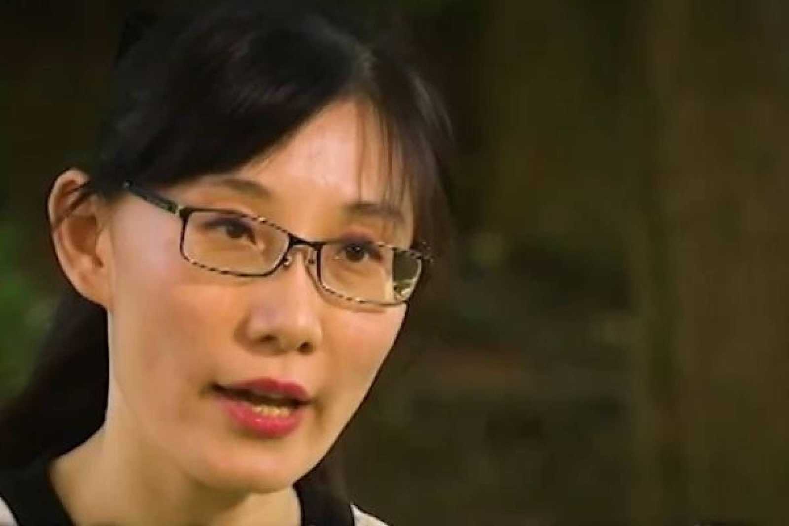 Chinese Virologist: China 'Intentionally' Released Virus