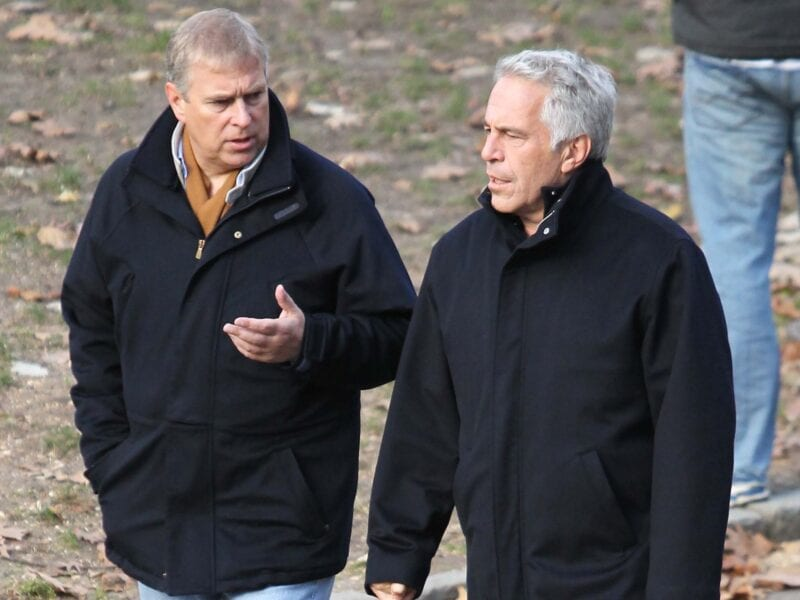It's well known that Prince Andrew had a friendship with Jeffrey Epstein, but why would the royal have been interested in the first place?
