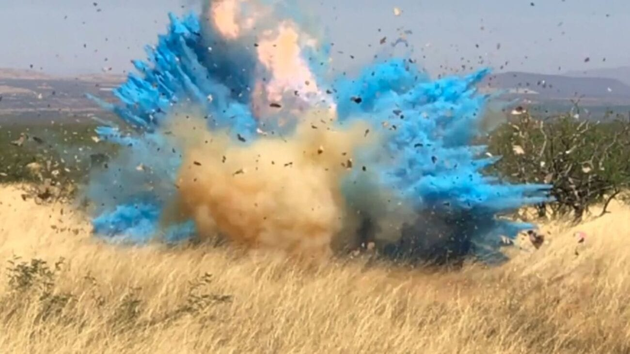 Is it a boy? A girl? Who cares about the gender of a baby when it causes a wildfire. Here are the very best memes roasting the gender-reveal wildfire.