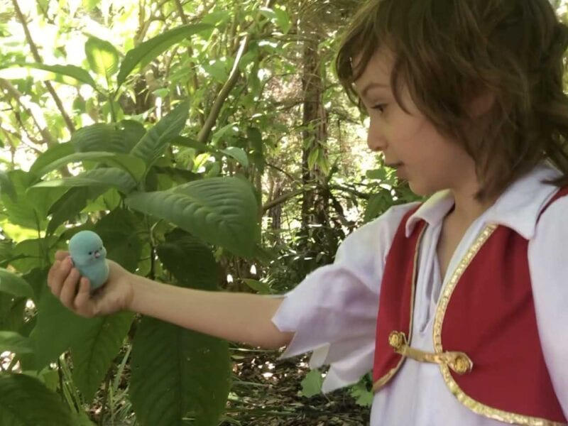 Giosué Bottini has had his directorial debut at the age of six years old with his short film 'Bird in the Wild'.