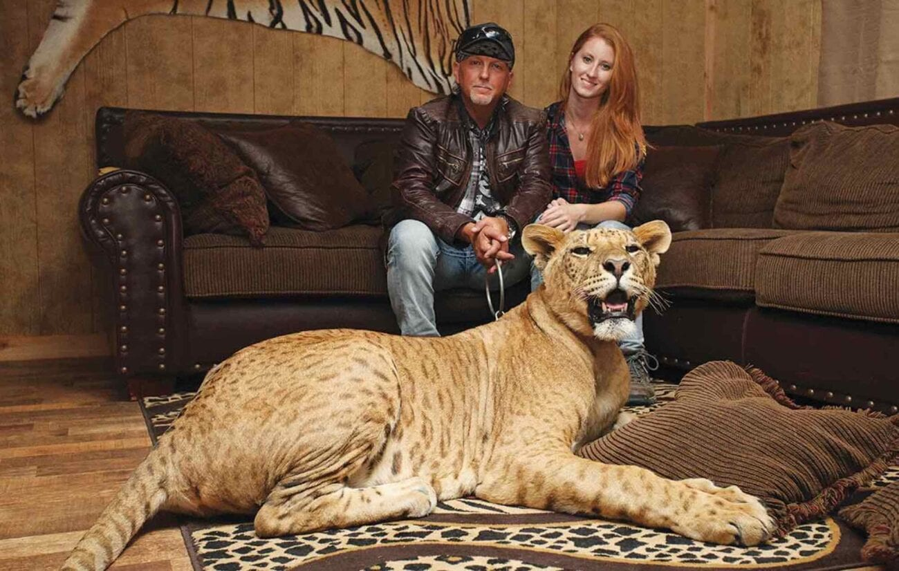 Is 'Tiger King's' G.W. Zoo closing down for good? Peer into the problems new owner Jeff Lowe is facing and how it can affect his net worth.