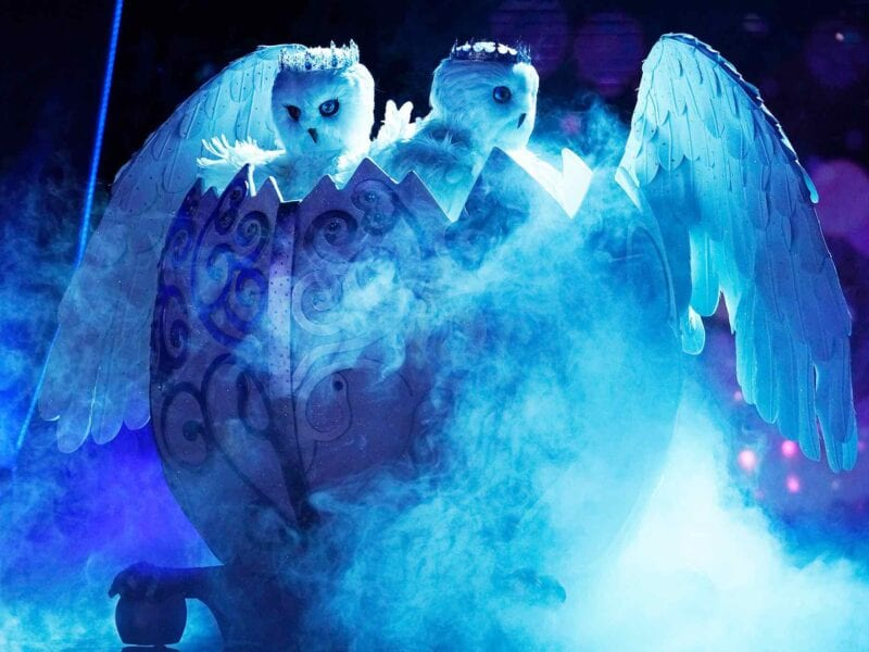 The Snow Owls on 'The Masked Singer' are a surprising first for the show and people are dying to know who the duo are. These are our guesses.
