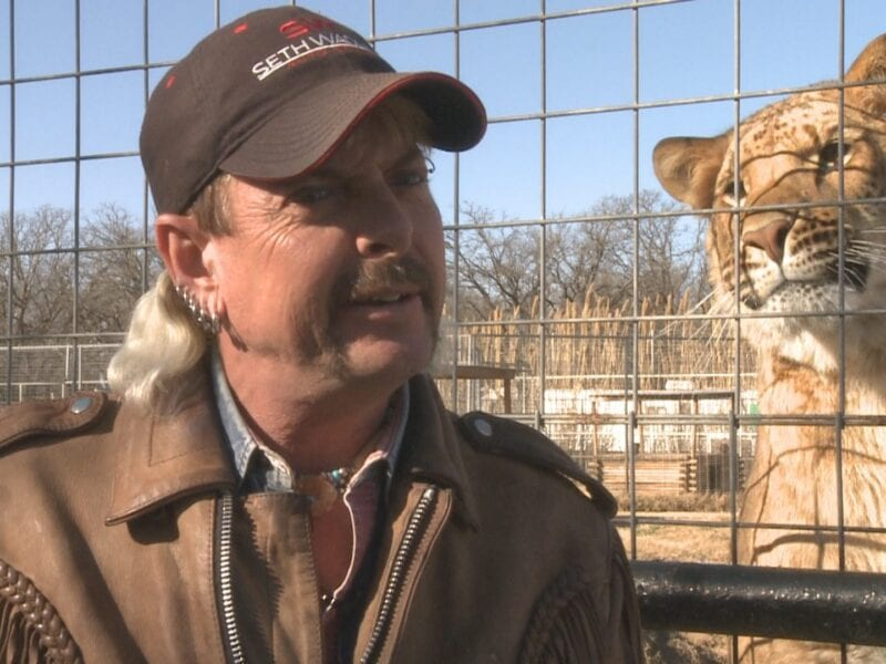 One of the consequences regarding Tiger King was the closure of Joe Exotic's zoo. How much damage was done on Exotic's old zoo?