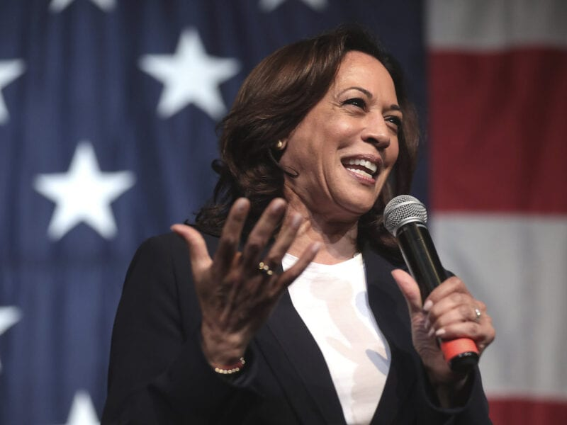 How did Kamala Harris manage to achieve such a high net worth over her legal & political career? Here's everything you need to know.