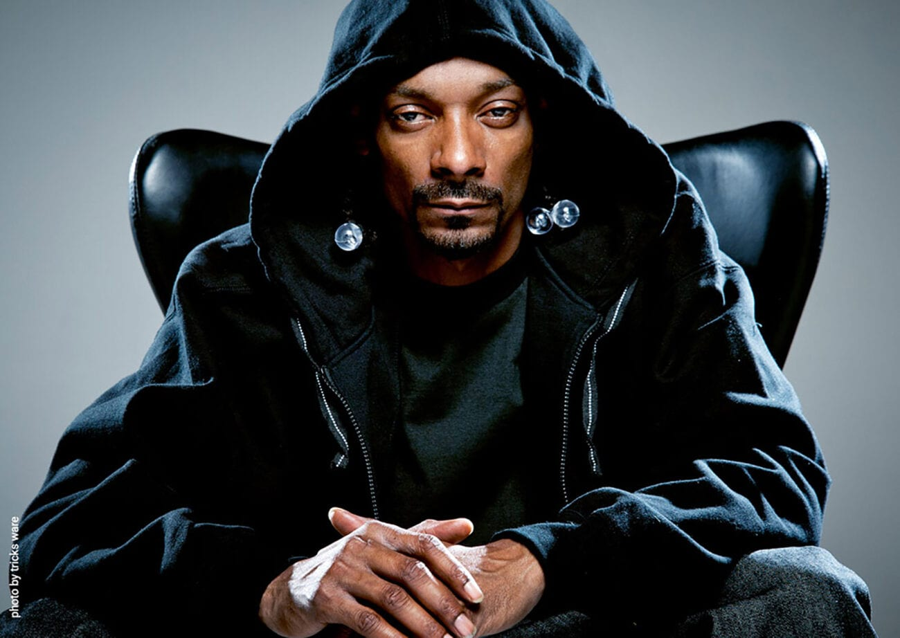 Snoop Dogg is a rap music superstar, iconic pitchman, and has opened the door for other artists. Has this decreased his net worth?