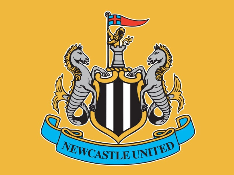 Newcastle FC is on its way to a crucial match against Liverpool today, as both teams hope to close out 2020 with a triumph. Here's how to stream.