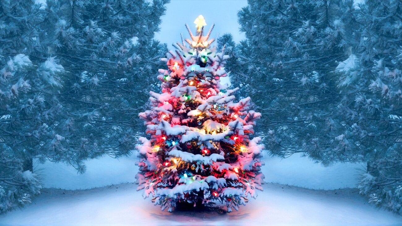 ¿Estás harto de ver árboles de Navidad perfectos? Checa estas decoraciones navideñas desastrosas que te sacarán una sonrisa.