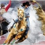 The National Finals Rodeo is underway. Find out how to stream the 2020 NFR online for free.