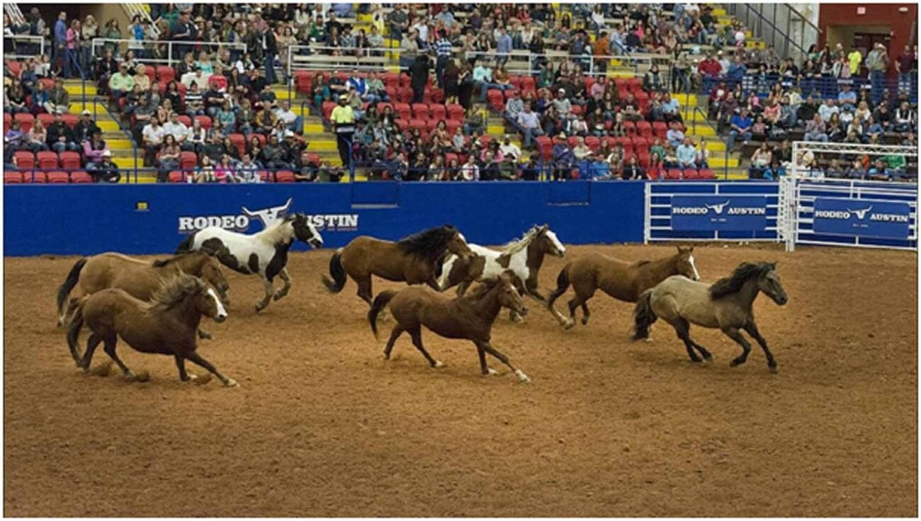 How To Watch NFR (National Finals Rodeo) Live Stream Online 2020