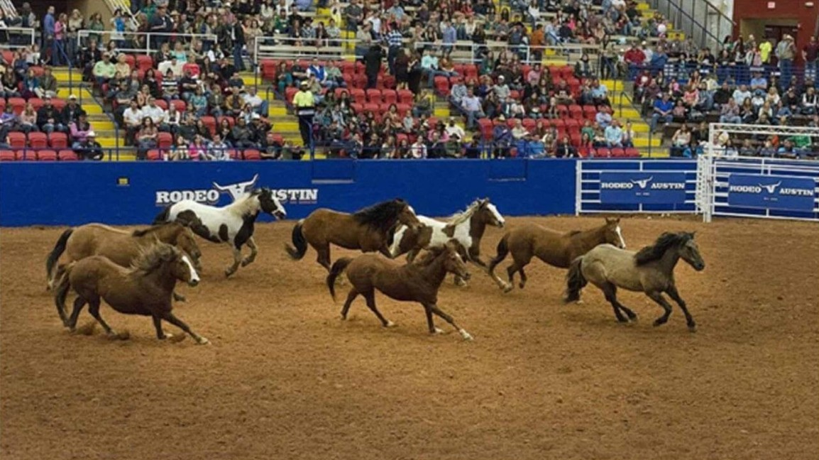 The Wrangler National Finals Rodeo event is here. Find out how to watch the 2020 NFR for free online.