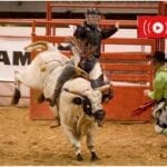 Check out day 2 of the Wrangler NFR 2020 competition by tuning into these live streams.